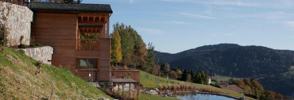 Massivholzhäuser ohne Leim oder Metall
