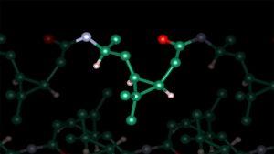 Monomereinheit des Poly-3S-caranamid.