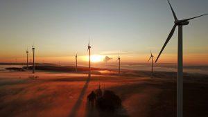 Rund 20 Prozent des Stroms wurden in Deutschland 2018 von Windenergieanlagen erzeugt.