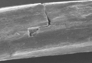Abbildung 9: Ermüdungsbruch am litzenverdichteten Draht